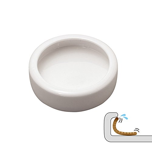 DC ADYOU Reptile Ceramic Food&Water Bowl Worm/Dubia Roaches Dish against Escaping (Small) -