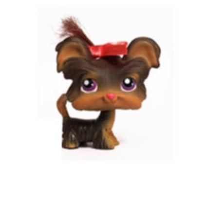 Amazoncom Shih Tzu Yorkshire Terrier Yorkie Puppy Dog 398 Tan