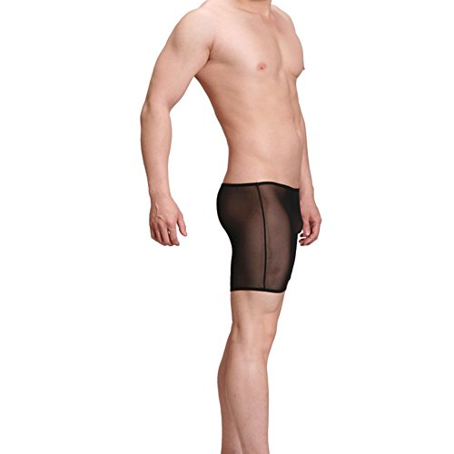 GuPoBoU168 Mens Sheer See-Through Mesh Shorts Boxers Underwear - Sheer Mens Shorts