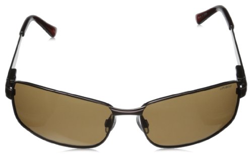 soleil P4416 de Brown Homme Polaroid Rectangulaire Marron Brown Lunette Ux7qPEAwv