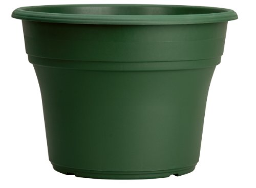 Akro-Mils PA12000B71 Panterra Pot, Green, 12-Inch by Akro-Mils