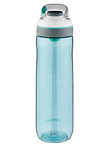 Clip Water Bottle (Contigo AUTOSEAL Cortland Water Bottle, 24oz, Greyed Jade)