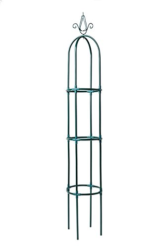 Yarti Garden Trellis Obelisk Metal Trellis with Sturdy Anti-rust Plastic Kit Supporter Frame for Rose, Vines, Tomato and Vegetables 10.6-in Dia 63-in High, Green (Garden Metal Obelisk)