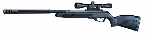 Hornet Maxxim Air Rifle .22 Cal (Gamo Hornet Air Rifle With 4x32 Scope Reviews)