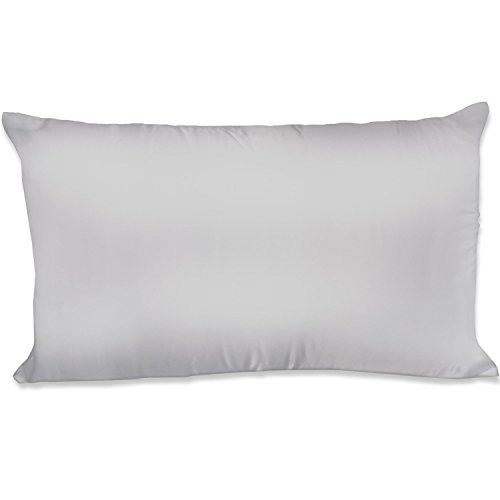 Spasilk 100% Silky Satin Hair Beauty Pillowcase, King, Silve