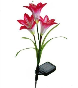 WannaBi None LED Solar Flower Light, Red