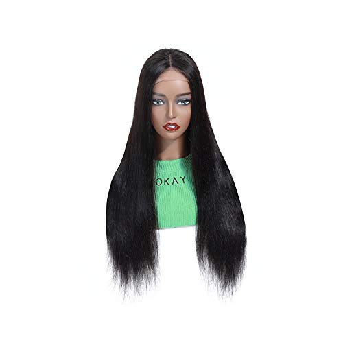 Malaysia Straight Lace Closure Human Hair Wig 44 Remy 28 30 Inch Glueless Pre Natural ()