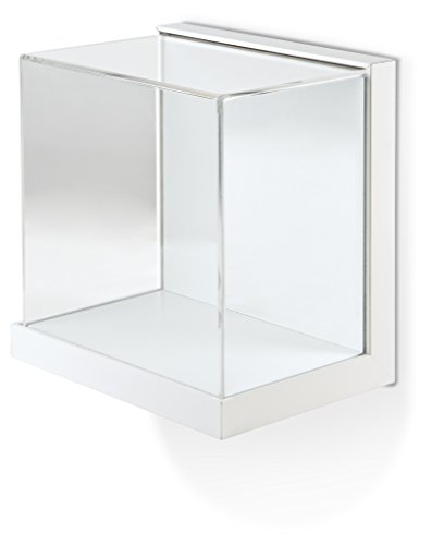 Gaylord Archival Little Gem Wall-Mount Display Case Wall Mount Curio Cabinets
