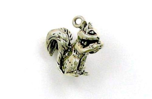 Sterling Silver 3-D Squirrel Charm - Jewelry Accessories Key Chain Bracelet Necklace ()