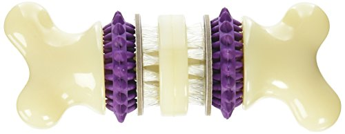 PetSafe Busy Buddy Bristle Bone Treat Holding Toy with Dental Formula, Medium -