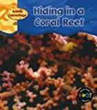 Hiding in a Coral Reef, Patricia Whitehouse, 1403407959