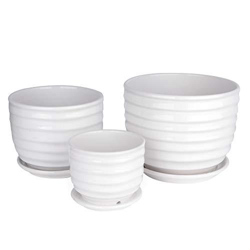 Betrome Ceramic Garden Flower Plant Pot Set of 3, Small to Medium Sized Round Flower Pot