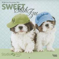 Sweet Shih Tzu by Myrna 2014 Wall Calendar - Dogs 2014 Wall Calendar