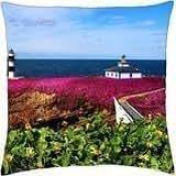 Pancha island lighthouse-Galicia, Spain - Throw Pillow Cover Case (18