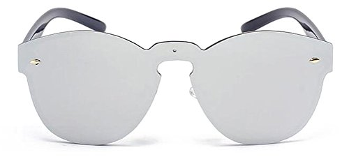GAMT Fashion Wayfarer Sunglasses Unisex Eyewear Silver (Best Sunglasses Company)