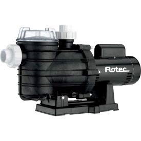 Flotec Two-Speed In-Ground Pool Pump, 1 HP (FPT20510)