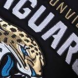 Officially Licensed NFL Jacksonville Jaguars Car