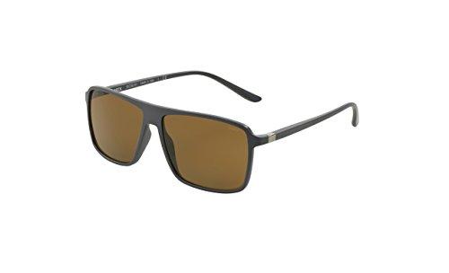 Starck Eyes SH5012 - 000383 Polarized - Sunglasses Starck