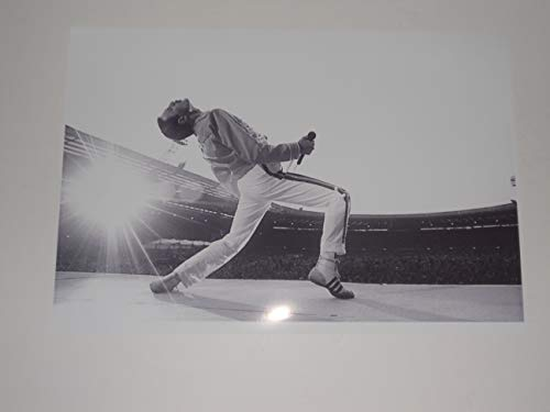 """Price comparison product image Cleveland Vinyl Large Freddie Mercury Queen on Stage '86 Wembley Rock God Poster 19""""x13"""""""