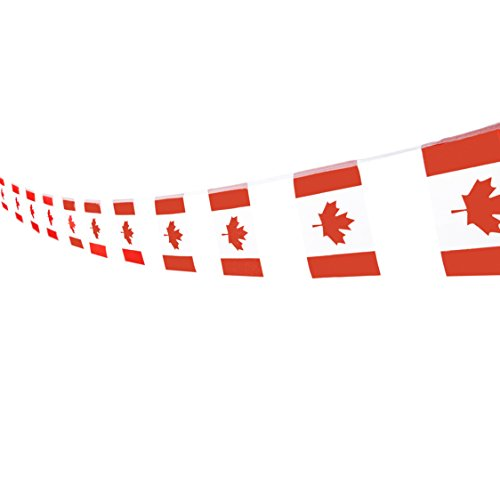 Canada Flag Canadian Flag,100Feet/76Pcs National Country Banner Flag String,Party Decoration Supplies For Olympics,Bar,Sports Event,Intarnational Festival -