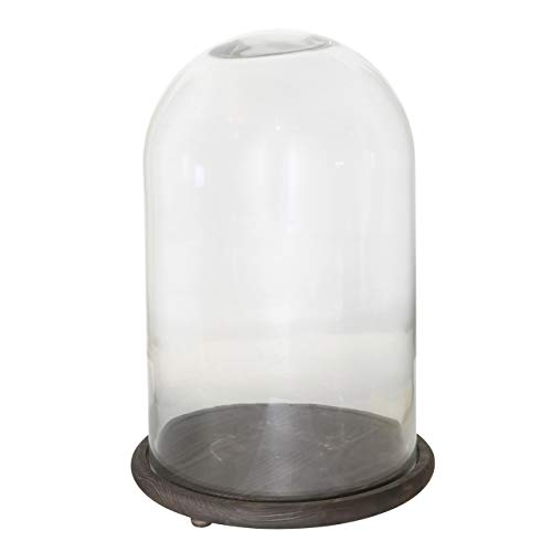 My Swanky Home Antique Vintage Style Dome Cloche Vitrine | Wood Glass Display Case - Cabinet Vitrine