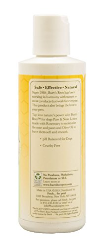Burts-Bee-Paw-and-Nose-Lotion-4-Ounce