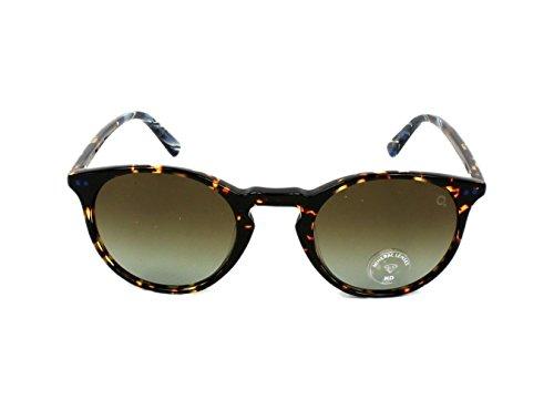 Etnia Barcelona Vintage Collection X-Berg Sun BKBL Black/Havana Sunglasses - Etnies Sunglasses