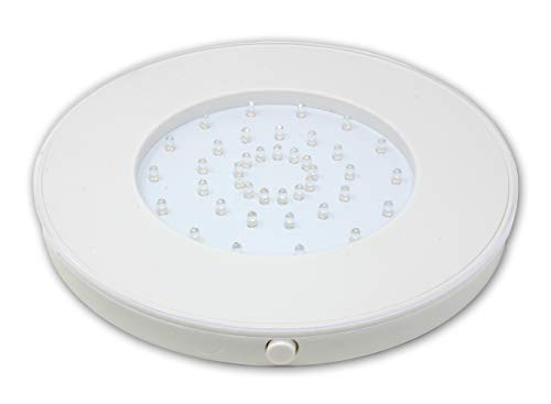 Fortune Products LB-W10 Super Bright 40 LED Light Base, 10 1/4