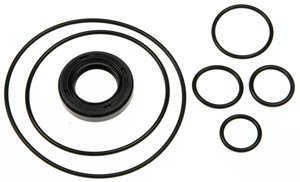 ACDelco 36-348810 Professional Power Steering Pump Seal Kit with Bushing, Seals, Snap Ring, and Washer