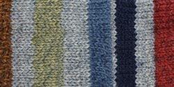Bulk Buy: Patons Kroy Socks Yarn (6-Pack) Blue Stripes 243455-55102 ()