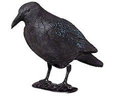 CROW BIRD SCARER - INTERHOME©