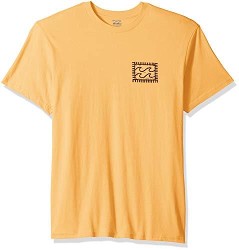 Billabong Men's Nairobi T-Shirt Cantaloupe Medium
