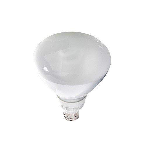 EcoSmart 85W Equivalent 2700K R40 CFL Light Bulb, Soft White Case ( 8 Bulbs)s