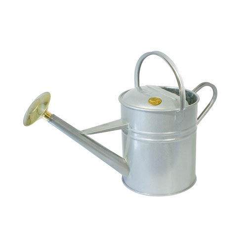 Bosmere Haws Traditional Peter Rabbit Design Metal Watering Can, 2.3-Gallon/8.8-Liter, Titanium