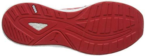 Compétition Wns Rouge Knit De Nrgy Chaussures hibiscus White Femme Neko Running puma Puma Engineer aTw8xqFy
