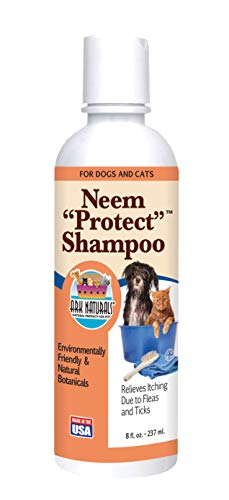 Ark Naturals Neem Protect Shampoo for Skin and Coat, Naturally Removes Oil, Dirt and Sebum from Dog and Cat Coats, Relives Itching Due to Ticks and Fleas, 8 oz. Bottle