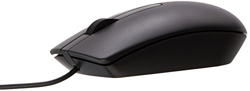 The dell mouse mode name Ms116 1000 DPI with USB wired option