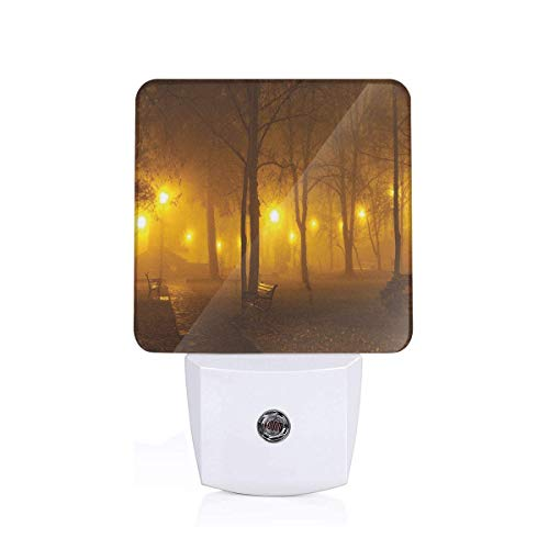 Colorful Plug in Night,Foggy Evening in The Park Autumn Season Nature Outdoors Misty Peaceful View,Auto Sensor LED Dusk to Dawn Night Light Plug in Indoor for Childs -