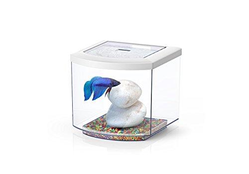 Aquatlantis Acquario bettacub Bianco