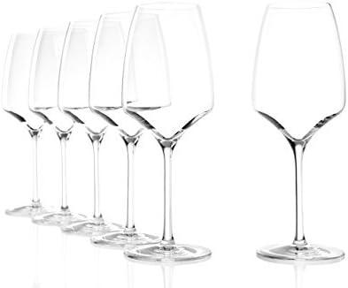 Stölzle Experience Copas para vino tinto, 450 ml, 6 unidades