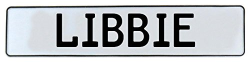 Libbie Wall (Vintage Parts 666762 Wall Art (White Stamped Aluminum Street Sign Mancave Libbie))