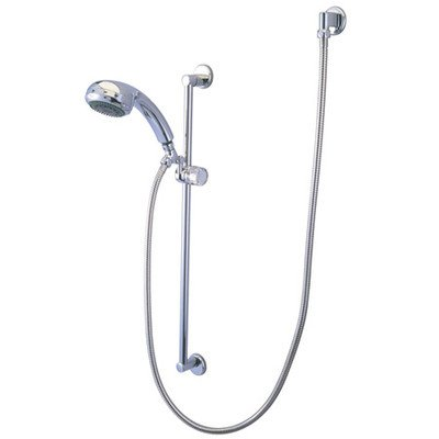 Professional Diverter Hand Shower Combination Finish: Polished Chrome