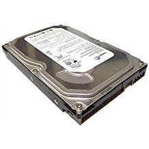 Seagate,Storite 250GB Hard Drive 8MB ~ 16MB cache 5400 ~ 7200 RPM Ultra ATA/100 (PATA) 3.5
