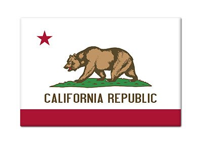 California State Flag Refrigerator Magnet