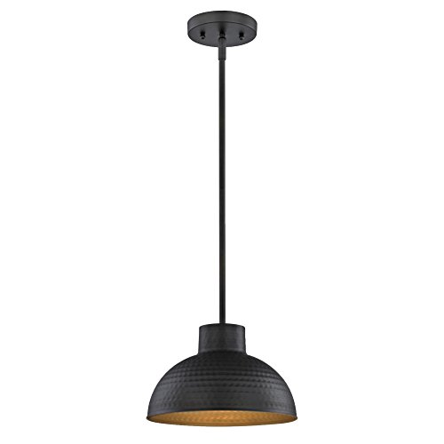 6309900 One-Light Indoor Pendant, Hammered Oil Rubbed Bronze Finish and Metal Shade with Gold Interior