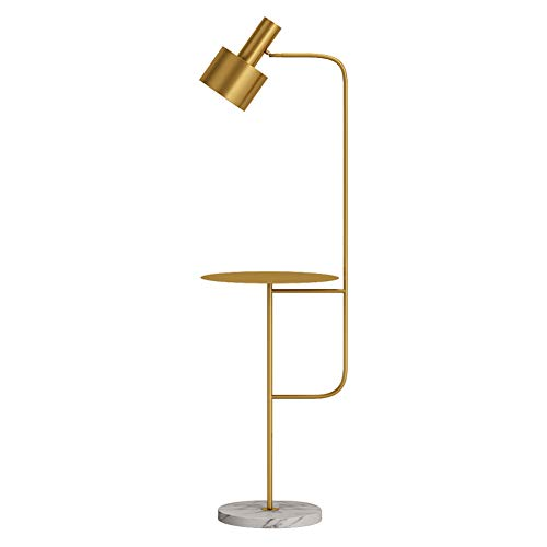 Hsyile Lighting KU300217 Contemporary Modern Creative Floor Lamp with a Table,Suitable for Living Room,Den,Office,Bedroom - E26 Bulb - Brushed Brass Finish (Tray Table Floor Lamp)