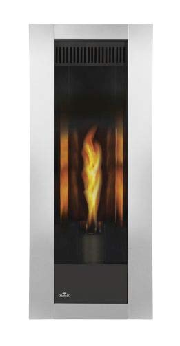 Napoleon Torch Gas Fireplace - Napoleon Torch Direct Vent NG Fireplace - Package 2