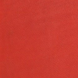Traditional Leather Luggage Tags , Red