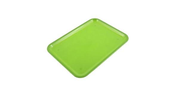 Amazon.com: DealMux plástico retângulo Comidas Bebidas Bandeja 10 polegadas Comprimento Verde: Kitchen & Dining