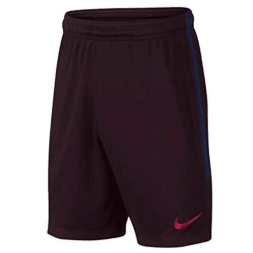 Nike 2019-2020 Barcelona Squad Training Shorts (Burgundy) - ()
